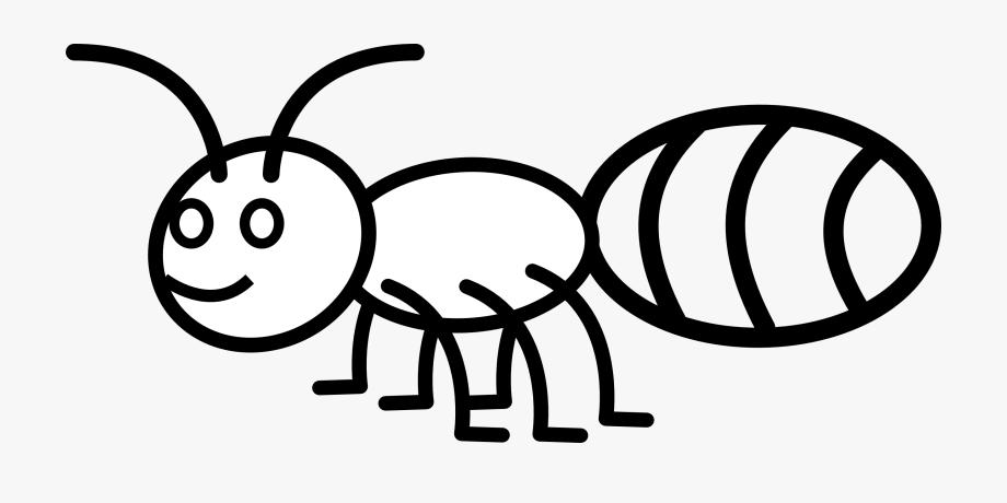 白蟻種類何其多
